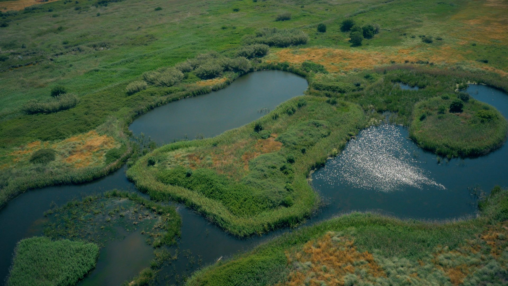 Environmental-park-vilamoura